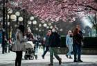 Koronavirusa görə karantin tətbiq etməyən İsveçdə vəziyyət ağırlaşdı